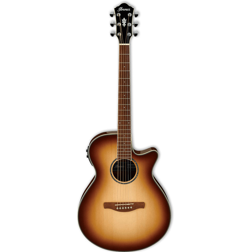 Ibanez AEG10II-NNB AEG Series Acoustic Electric Guitar